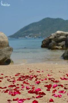wedding_koh_tao_thailand_fairytao_verstraete 00136